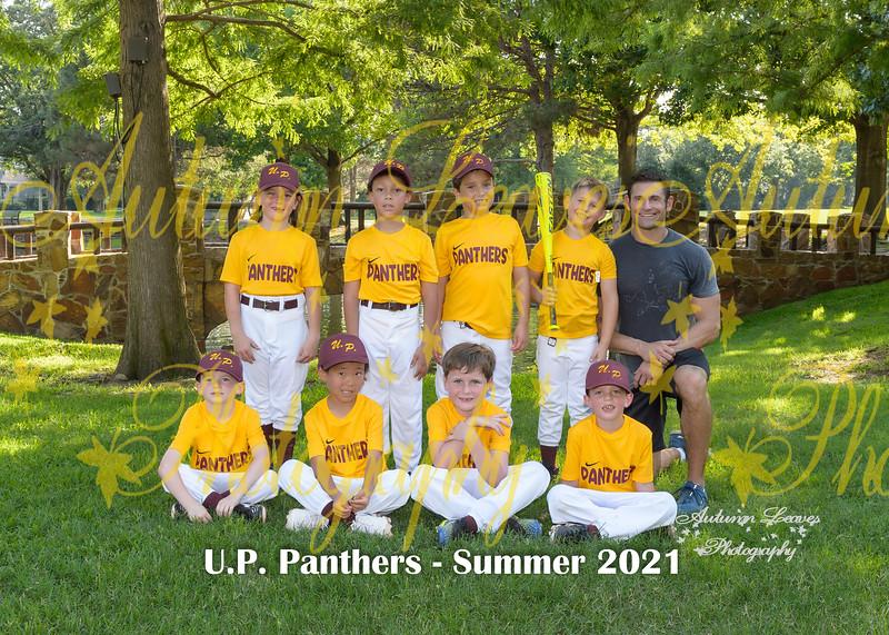 20210610 - # C2 1P UP Panthers-Cherkassky