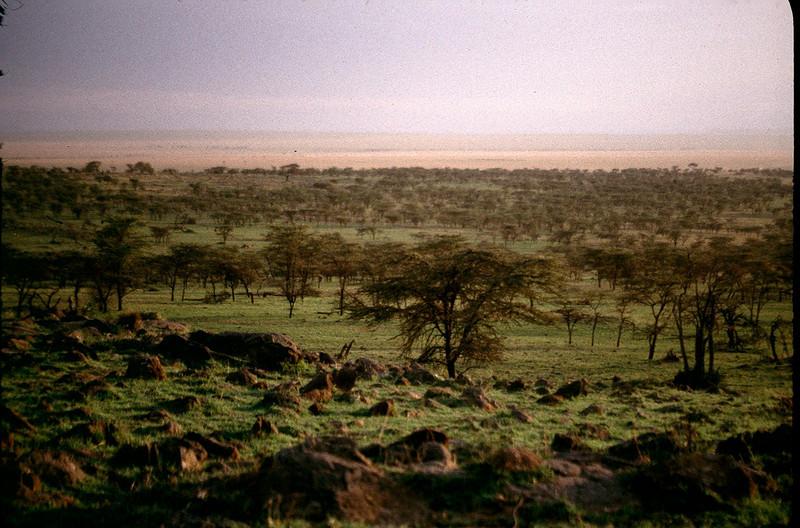 Kenya2_058.jpg