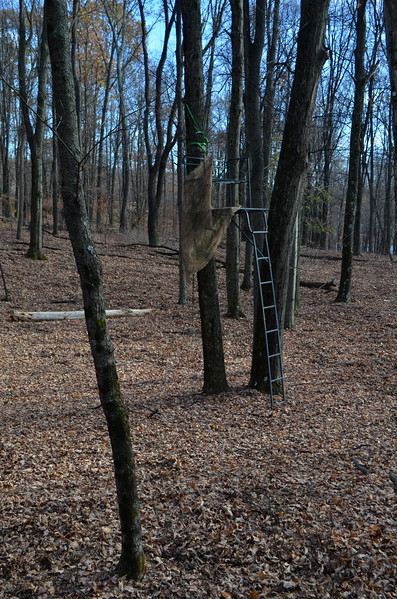 Tree stand on property - Is this Bobby Schoonmaker's ?