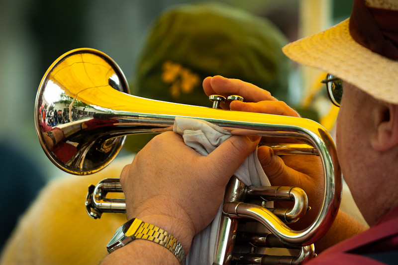 Brass, Bunnies and Bonnets Parade, Campbell, California, 2010