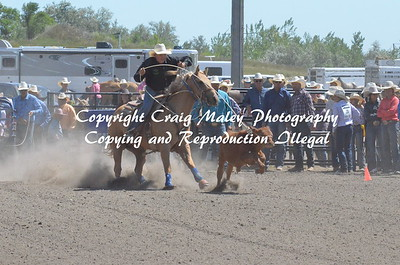 RIBBON ROPING 8-9-2020