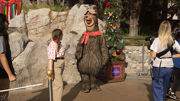 Disneyland Resort, Disney California Adventure, Country Bears