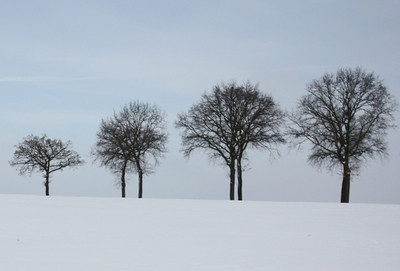 Zuid-Limburg (winter)
