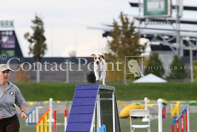 Cynosport - Performance Grand Prix Semifinal - 12 inch