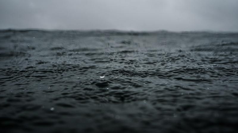 Rain Swamis (1 of 23).jpg