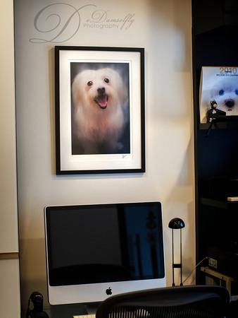 Framed Fine Art (Solo w texture)