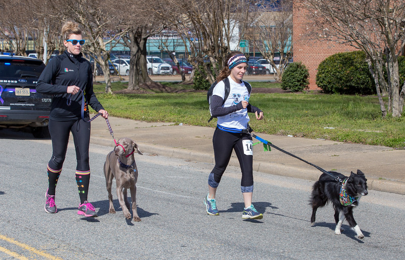 Richmond Spca Dog Jog 2018-673.jpg
