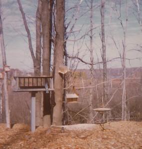 1976 Prescott Mi