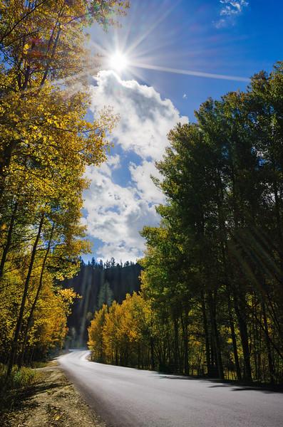 Road-to-Autumn.jpg