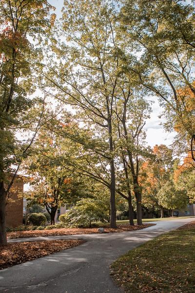 AVS_Campus_Sept-Oct2020-15.jpg