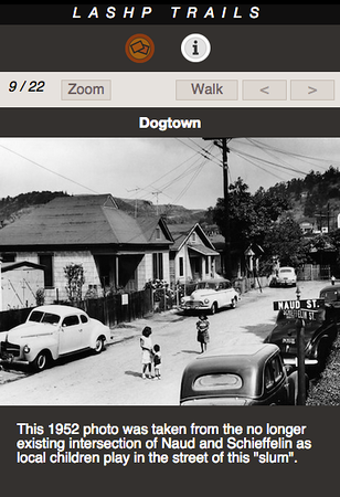 DOGTOWN 09.png