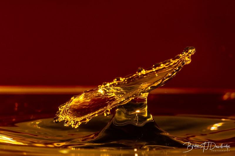 Splash_Art_yellow-1352.jpg