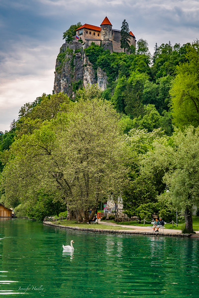bled castle with swan.jpg
