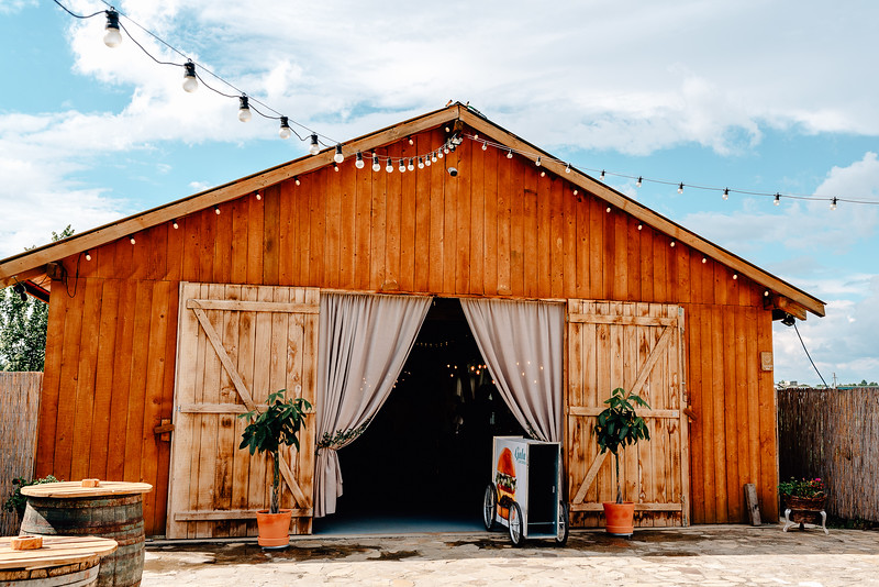 Nunta Green Spot Wedding Barn -49.jpg