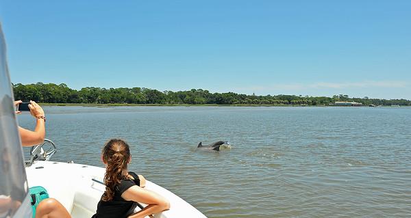 Jekyll Island Boat Tours Dolphin Daze Dolphin Golden Ray 06-18-20 1pm