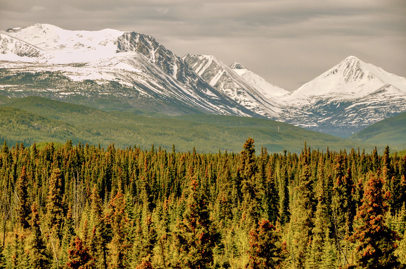 Alaska Hwy near Continental divide