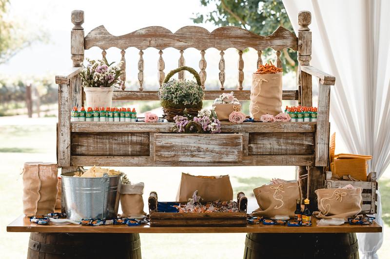 Wedding Planner Adriana Tavernini Bodegas Viñedos de Cote (resolución para web)-57.jpg