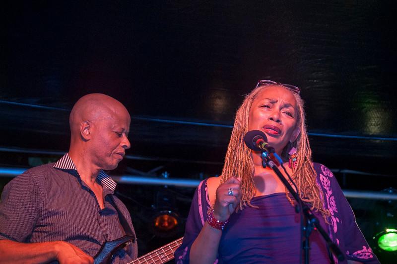 Jazz Matters at Wrens Nest 126.jpg