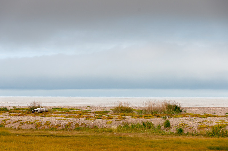Panorama of Hudson Bay in Manitoba, Canada