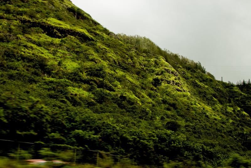 Journey into Oahu Photograph 32