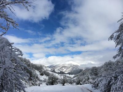 Parco Nazionale d'Abruzzo, Marzo 2014