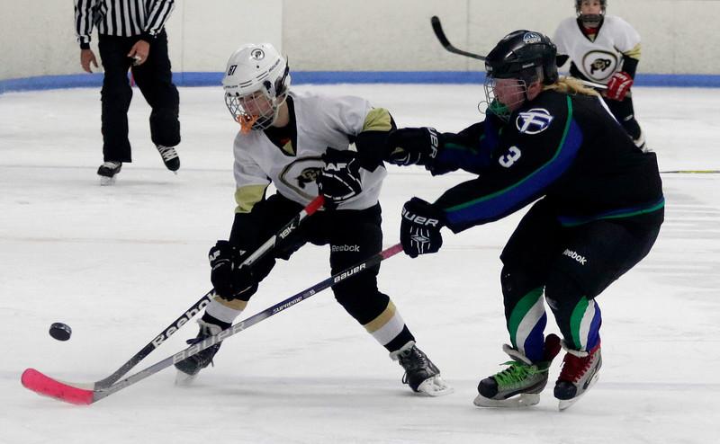 2016-Feb_12-Hockey-JPM1105.jpg
