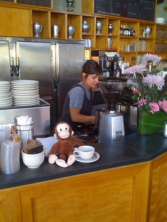 curious george at zeitgeist