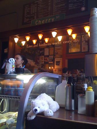 polar bear at cherry street cafe