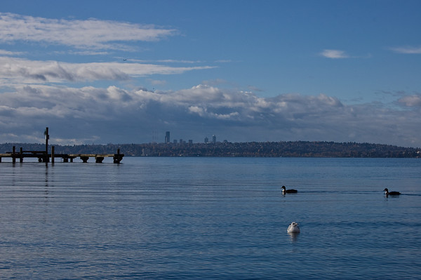 seattle in the distance