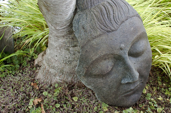 a sleeping face statue leaning against a tree