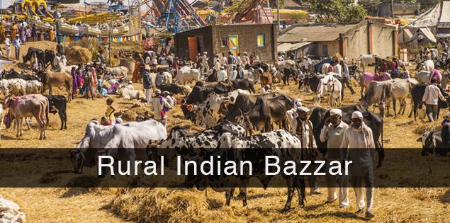 Rural Indian bazzar and cattle fair