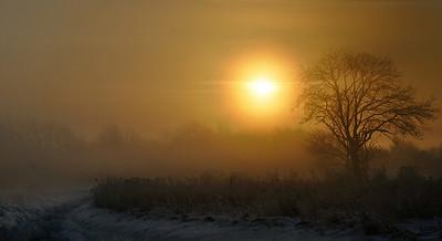 Solopgang i tåge og 10 graders frost ...
