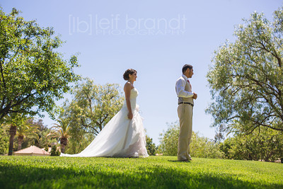 David & Teka Wedding 041