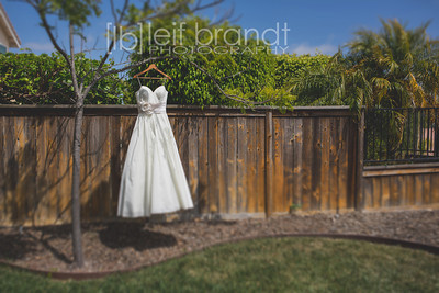 20130608 Josh & Carolyn Married!!!  003