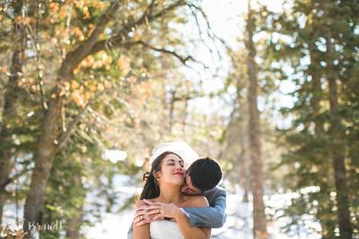 2012-12-22 Zach   Christina - Big Bear Wedding 033