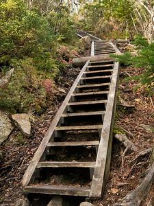 Ascending Mount Flume